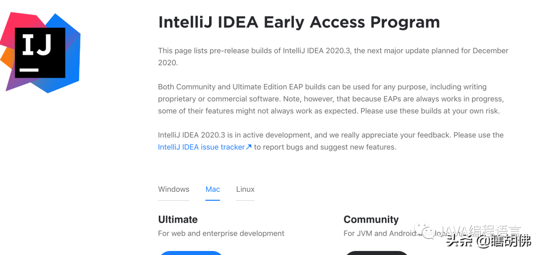 新版 IDEA 发布,牛逼!网友:内存占用有所好转!